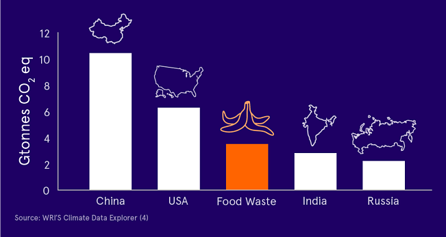 Sustainability Initiatives Blog Elements_Food Waste Graph Blue